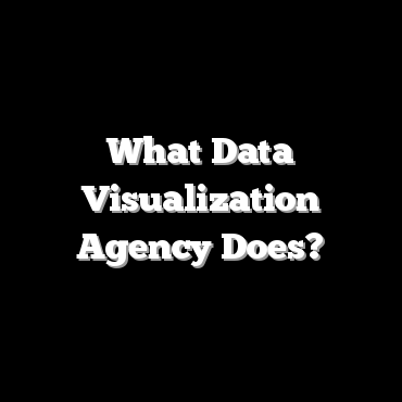 What Data Visualization Agency Does?